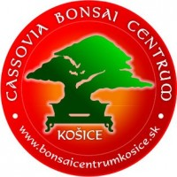 Logo_Bonsai_Centrum_KE