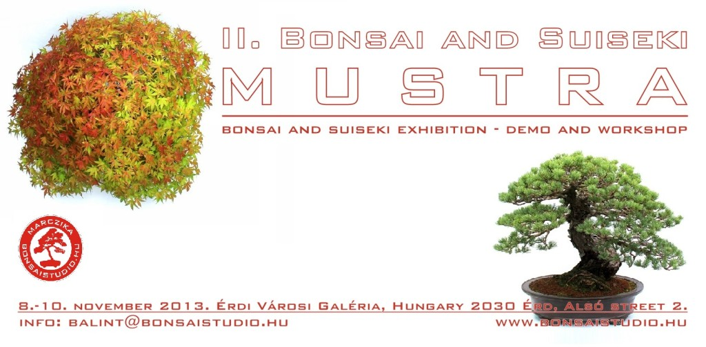 II bonsai and suiseki mustra exhibition hungary